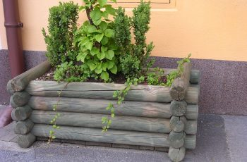 Blumentröge Holz-Riegler - Bild 3