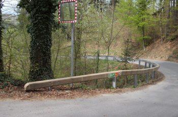 Holzleitschiene - System Riegler 1987 - BST Voitsberg Zangtal (8)