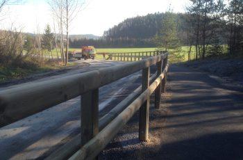 Holzleitschiene - System LBD II b - mit Holzgeländer Sonderanfertigung für Gemeinde Rosental (4)