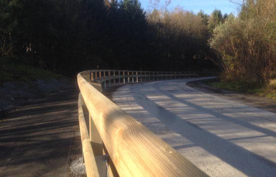 Holzleitschiene - System LBD II b - mit Holzgeländer Sonderanfertigung für Gemeinde Rosental (8)