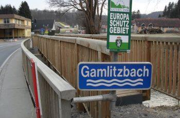 Holzbrücke mit Geländer System RAABA light - BST Gamlitzbach (1)