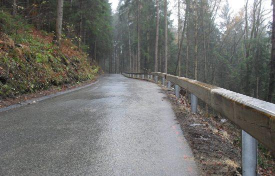 Holzleitschiene - System Riegler 1987 - BST Voitsberg Arnsteinstraße (2)